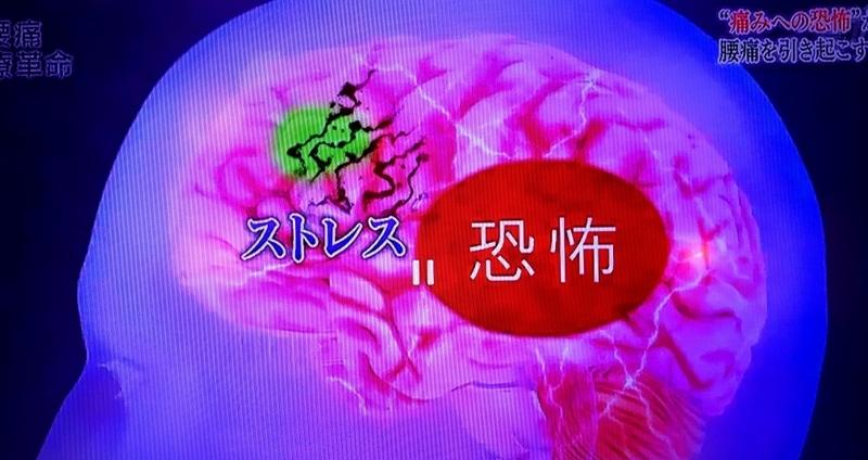 f:id:shusaku1:20171119000921j:image