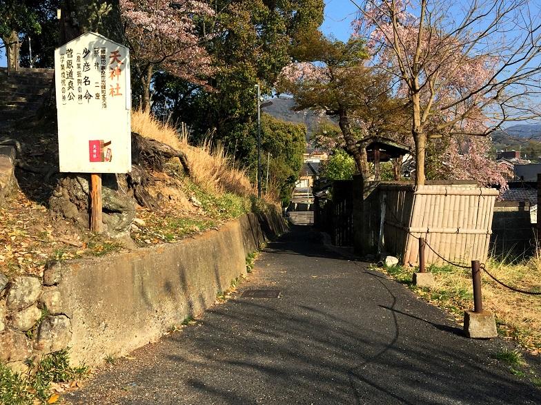 f:id:shusaku1:20180403161847j:image