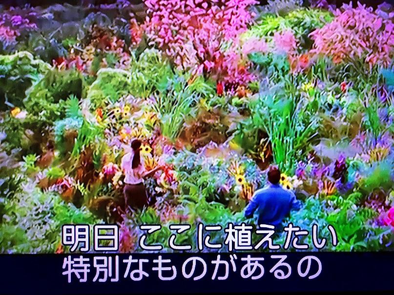 f:id:shusaku1:20190219090312j:plain