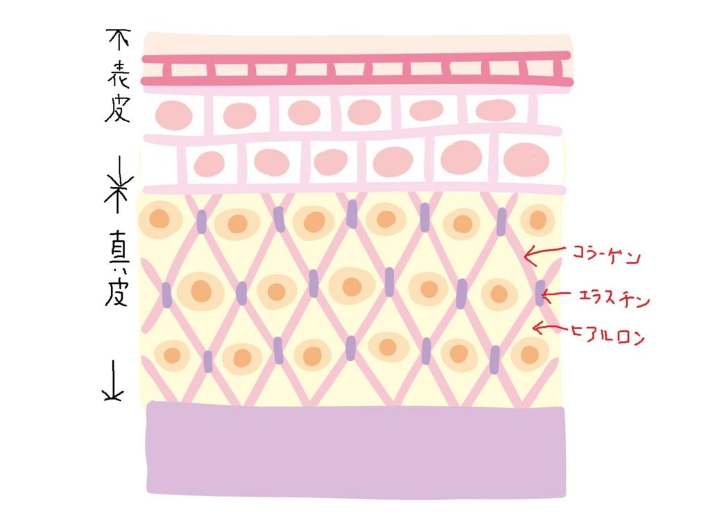 f:id:shuu10:20170417100924j:plain