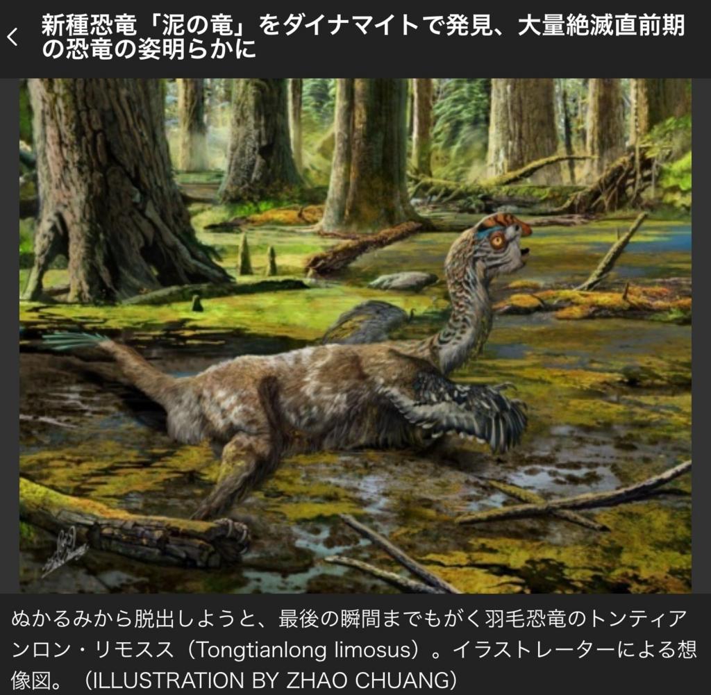 f:id:shuuichitan:20161116161152j:plain