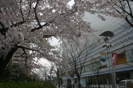 f:id:shuyo:20120414115322j:image
