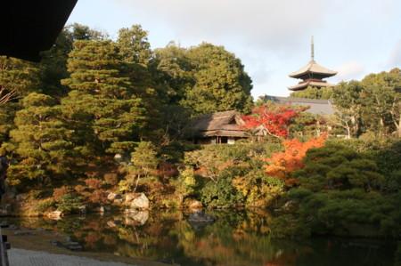 f:id:shuyo:20121124152908j:image