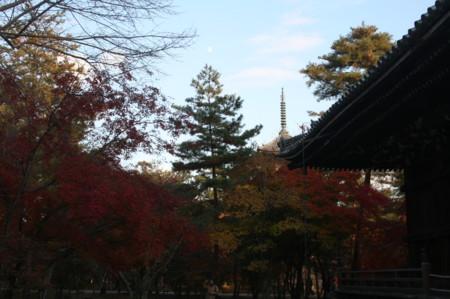 f:id:shuyo:20121124155006j:image