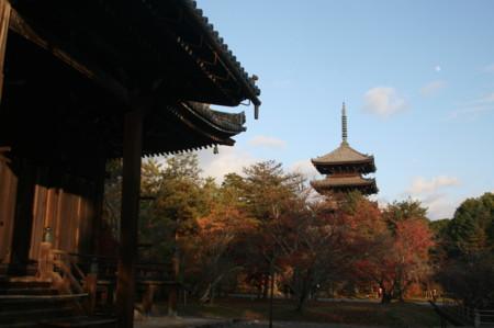 f:id:shuyo:20121124155056j:image