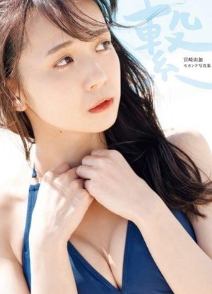 f:id:shuyo:20190613125330j:plain