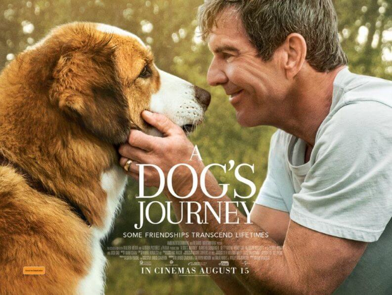 poster of movie A Dog's journey