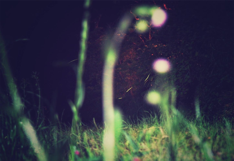 f:id:si_ku:20180526223803j:image