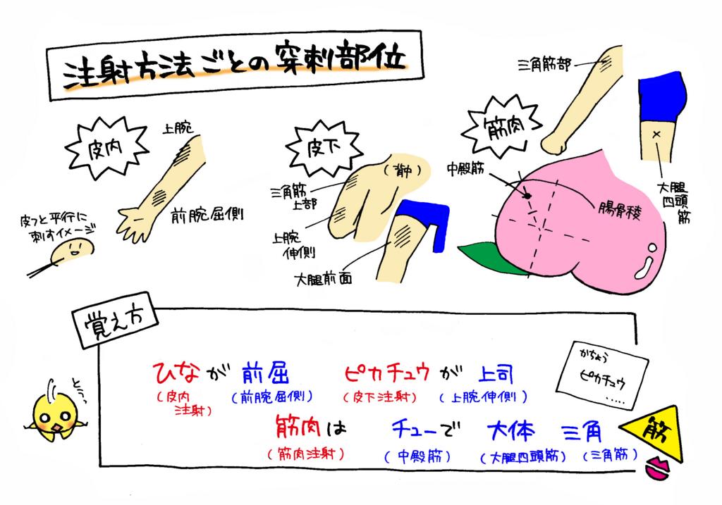 基本臨床手技 末梢静脈路確保 - igaku.co.jp