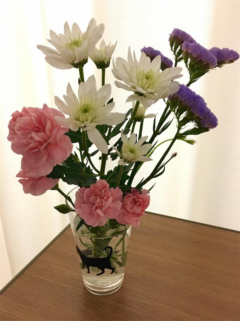 f:id:sibasakura218:20170312222611j:image