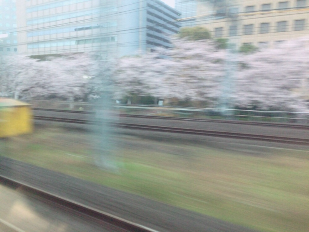 f:id:siestasuki:20160403062639j:image