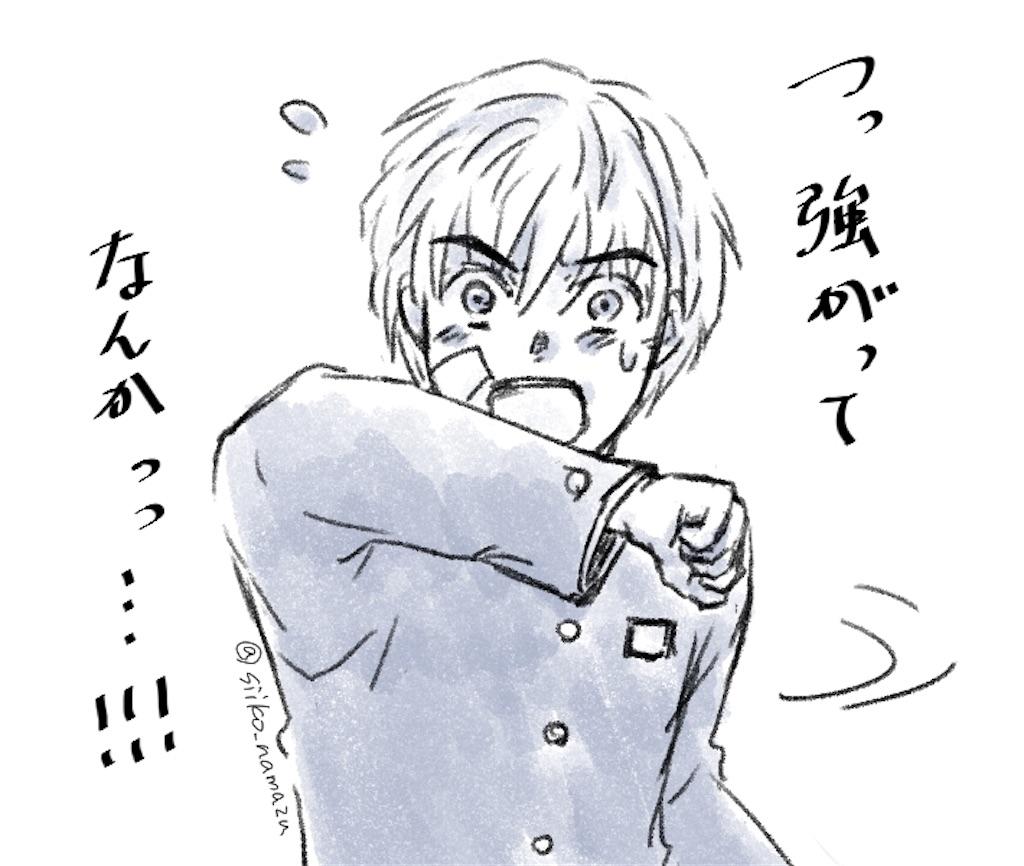 f:id:siiko-namazu:20191119101609j:image