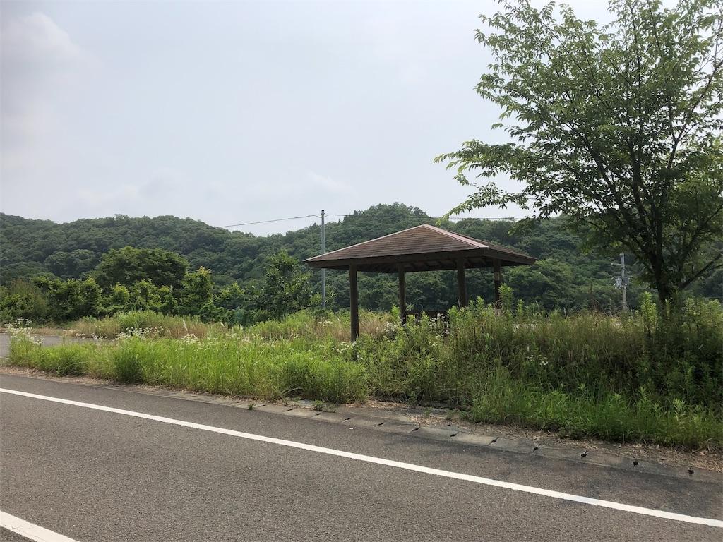 f:id:sikakebunko:20190620205930j:image