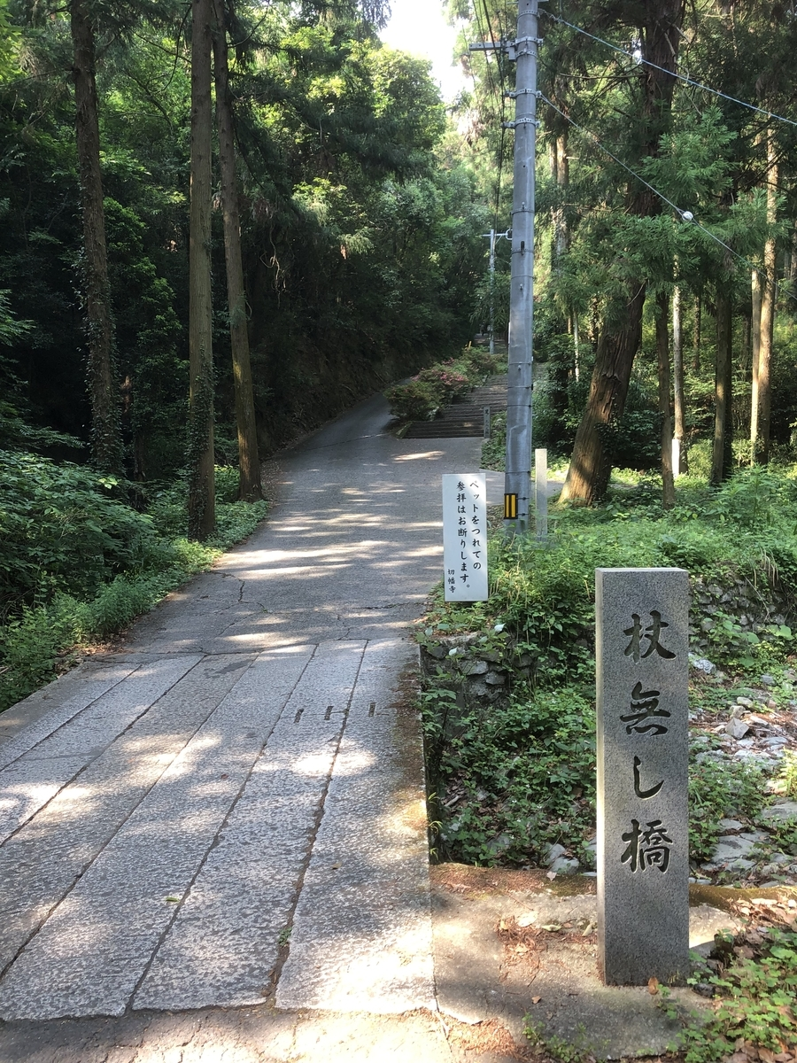 f:id:sikakebunko:20190621070402j:plain