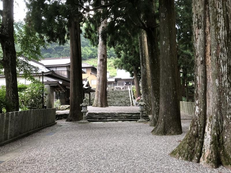 f:id:sikakebunko:20190623210746j:plain
