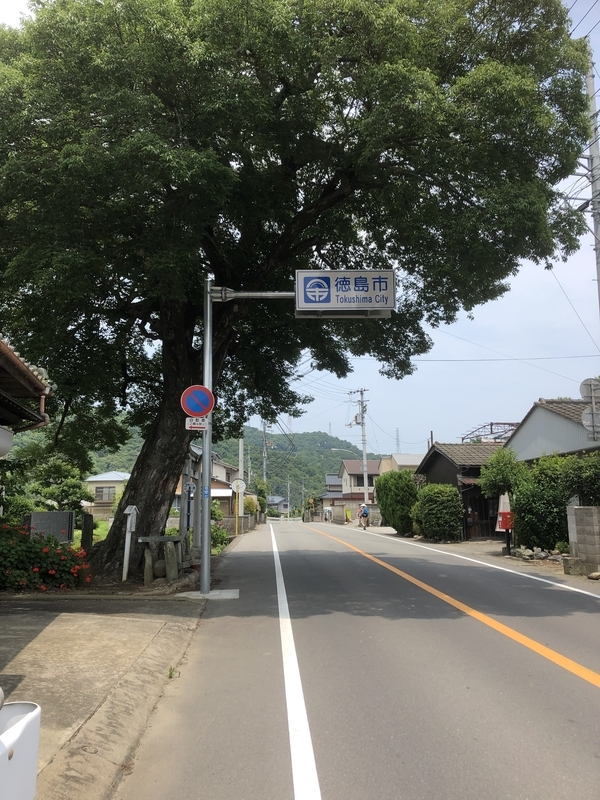 f:id:sikakebunko:20190624004839j:plain