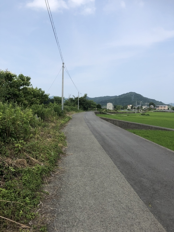 f:id:sikakebunko:20190624005801j:plain