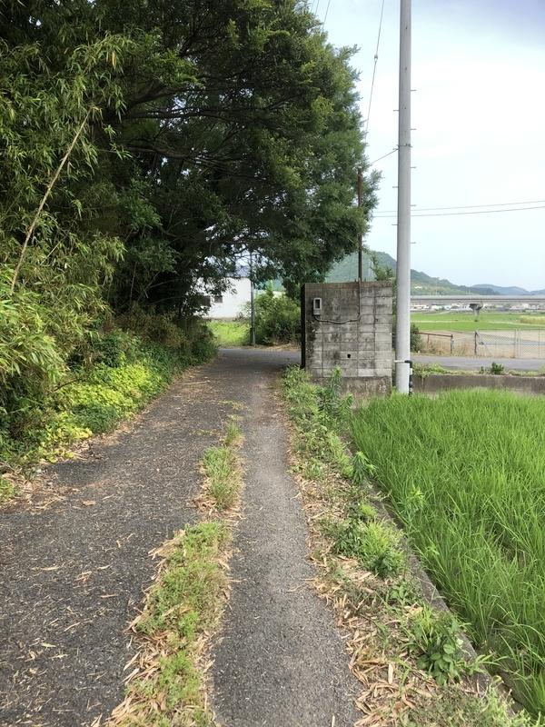 f:id:sikakebunko:20190624005859j:plain