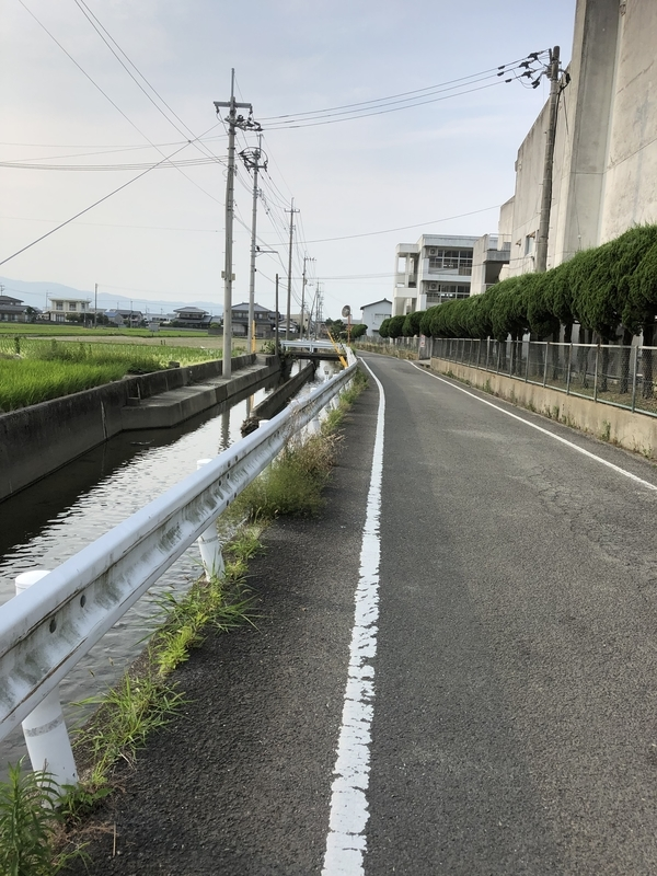 f:id:sikakebunko:20190624084919j:plain