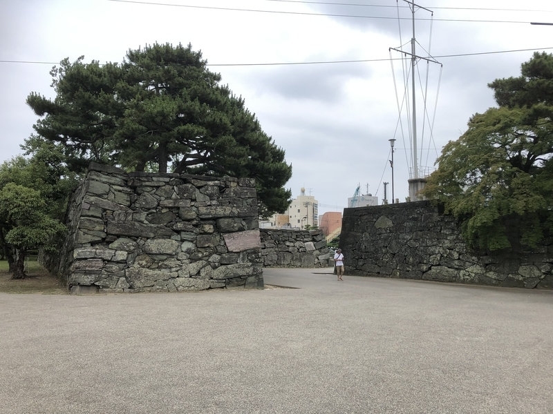 f:id:sikakebunko:20190624171138j:plain