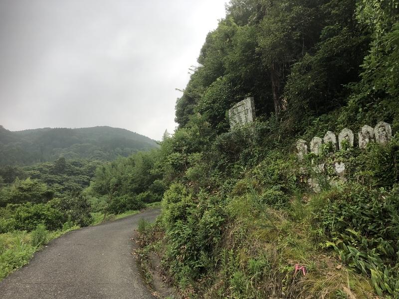 f:id:sikakebunko:20190627165626j:plain