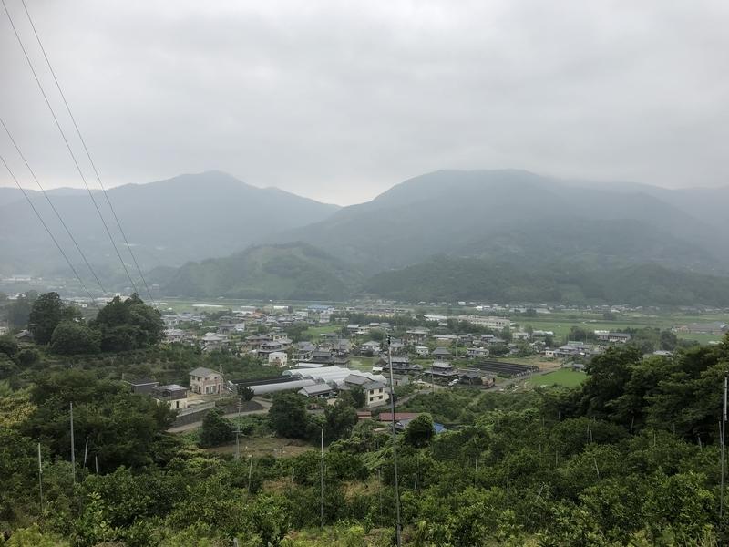 f:id:sikakebunko:20190627165851j:plain
