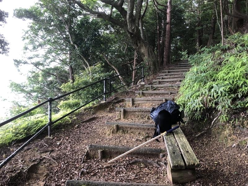 f:id:sikakebunko:20190627170206j:plain