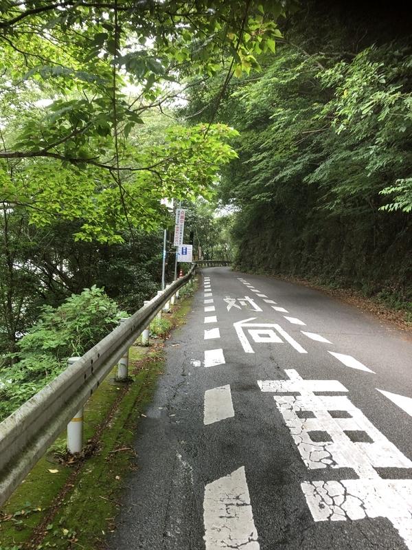 f:id:sikakebunko:20190627172852j:plain