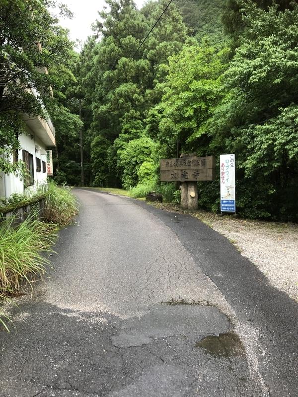 f:id:sikakebunko:20190627173451j:plain