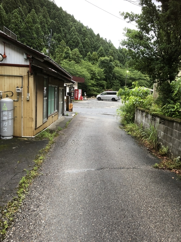 f:id:sikakebunko:20190627173504j:plain