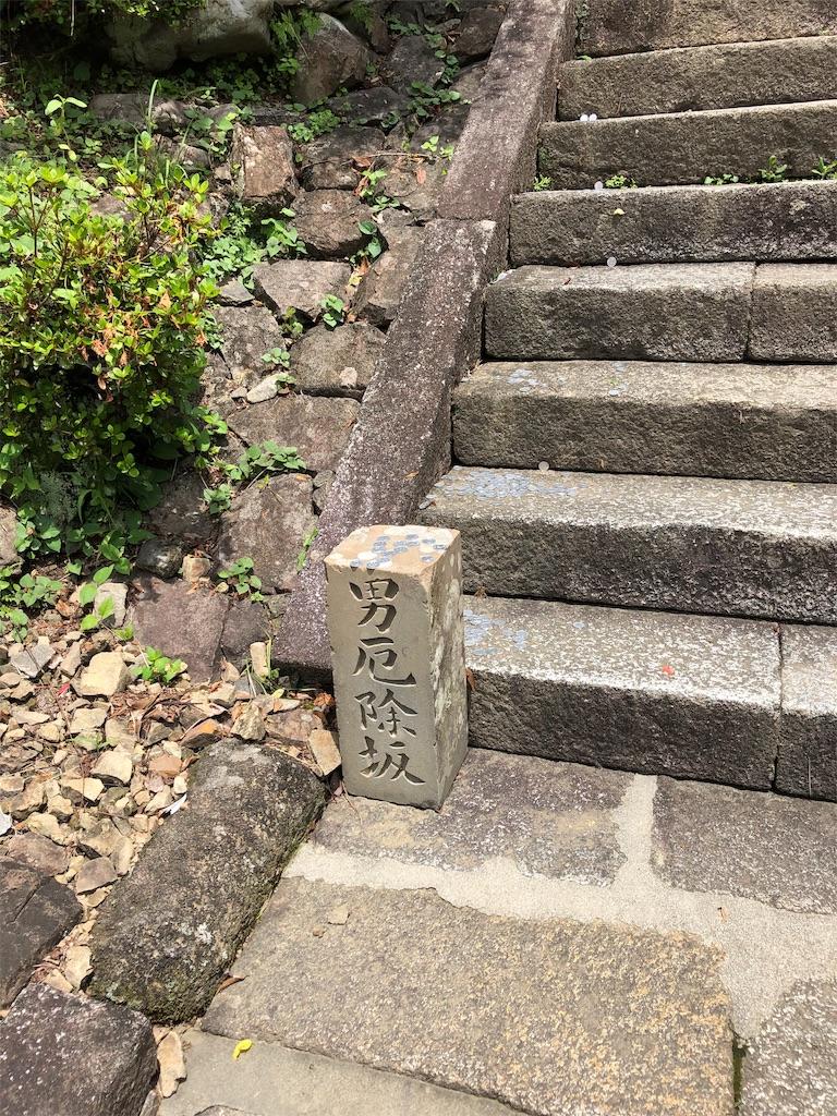f:id:sikakebunko:20190628162750j:image