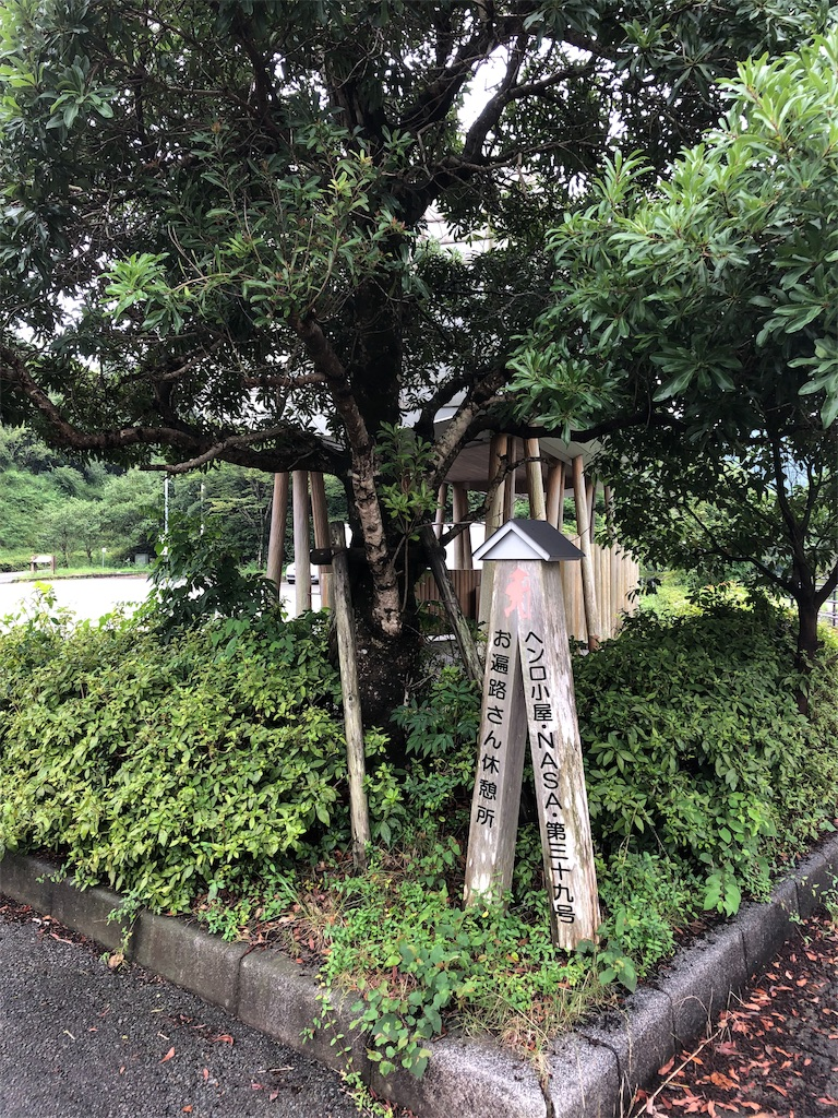 f:id:sikakebunko:20190724111008j:image
