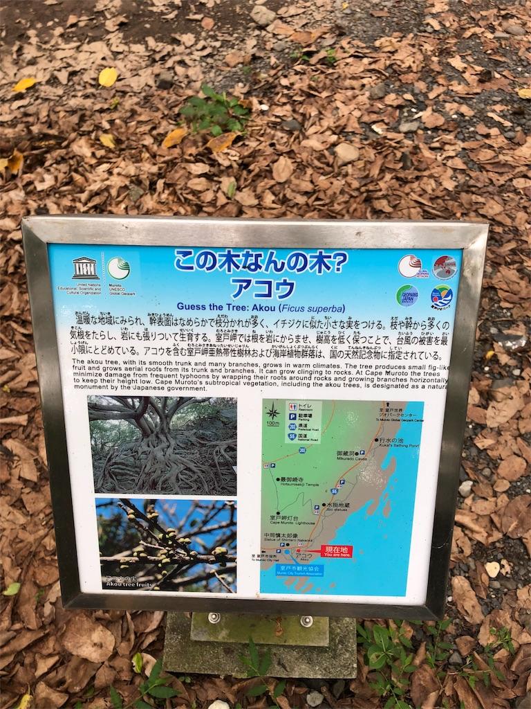 f:id:sikakebunko:20190726121411j:image