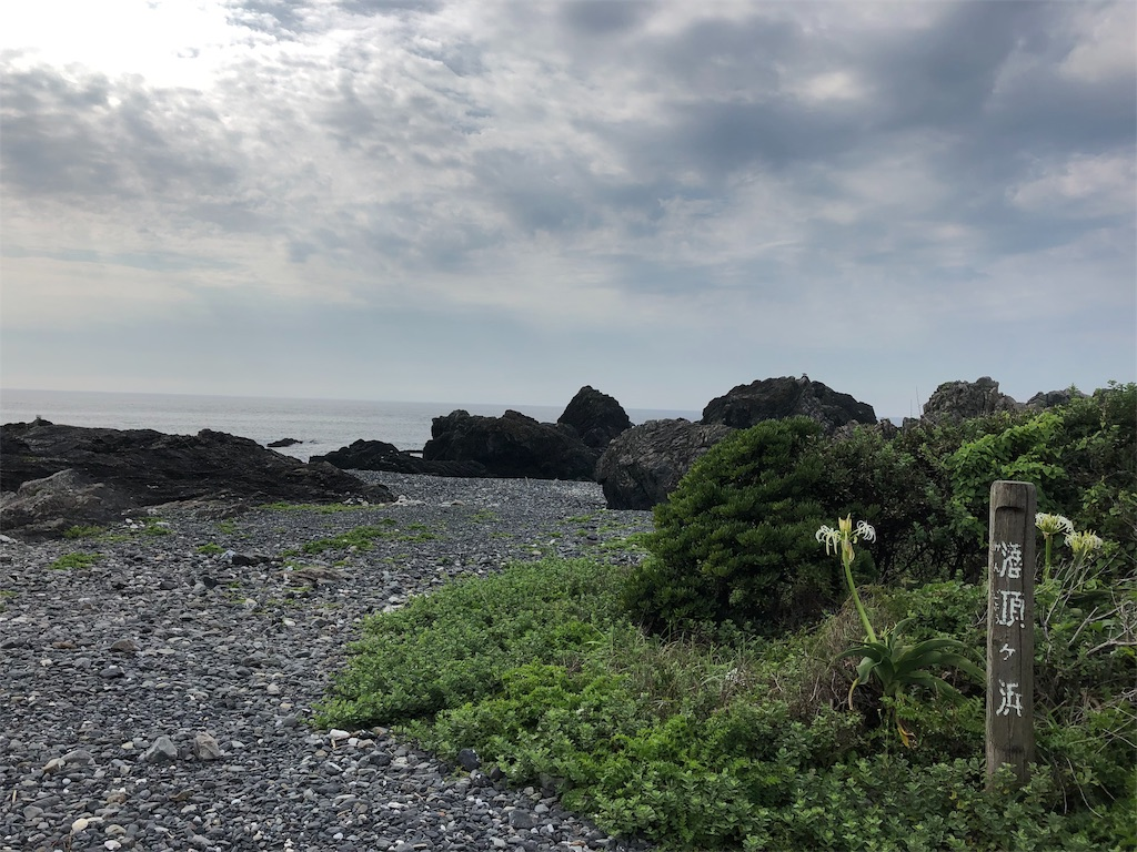 f:id:sikakebunko:20190726121826j:image