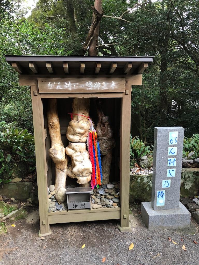 f:id:sikakebunko:20190728185658j:image