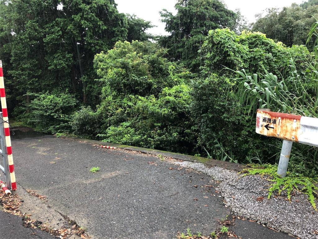 f:id:sikakebunko:20190728190110j:image