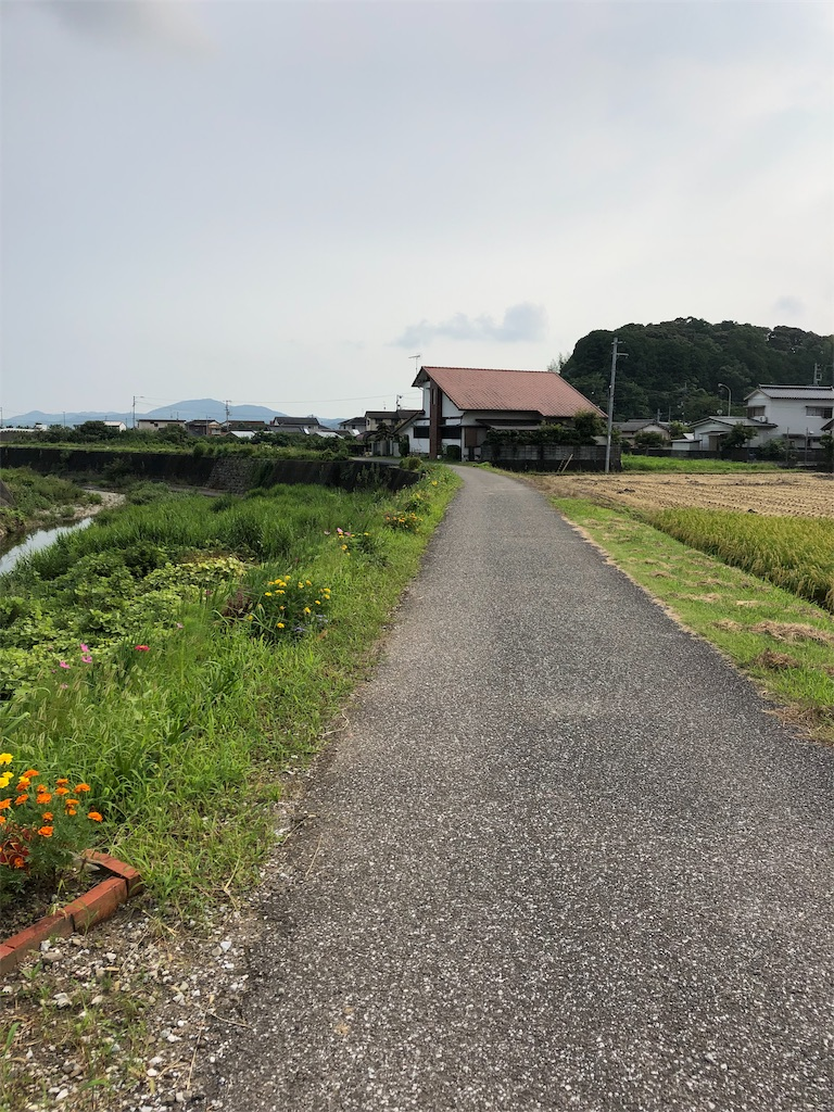 f:id:sikakebunko:20190729044528j:image