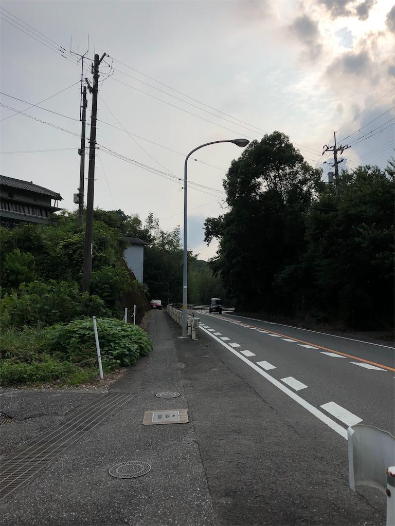 f:id:sikakebunko:20190729044539j:image