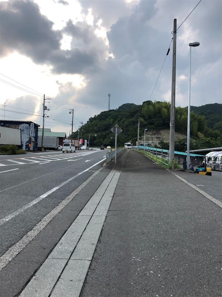 f:id:sikakebunko:20190729045342j:image