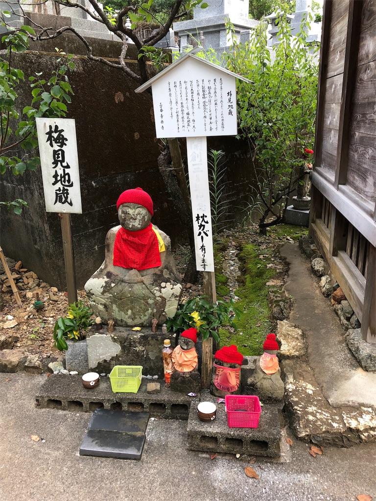 f:id:sikakebunko:20190729050453j:image