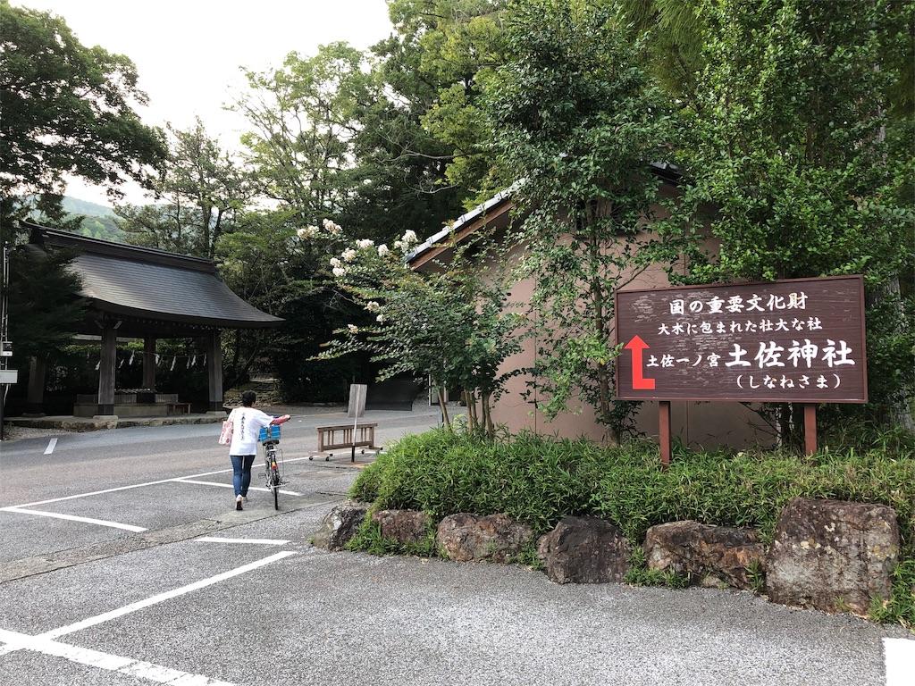 f:id:sikakebunko:20190729050726j:image