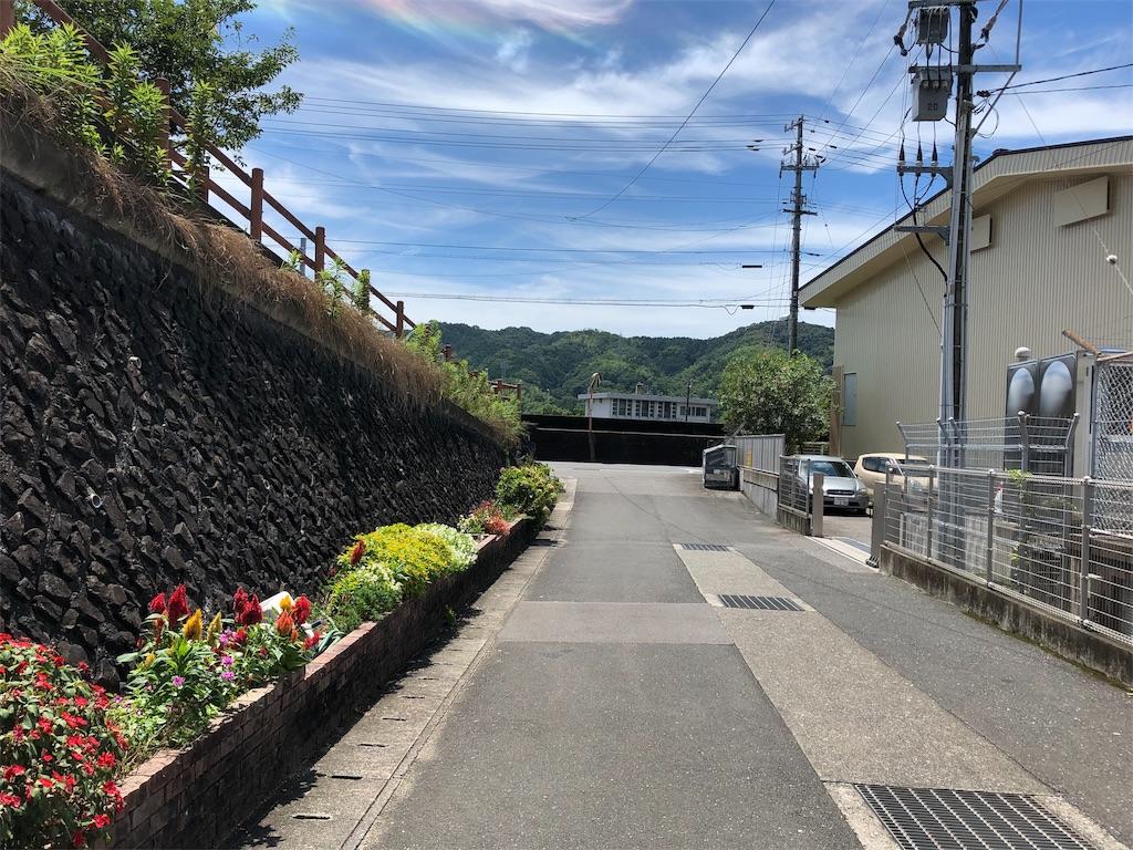 f:id:sikakebunko:20190731215419j:image