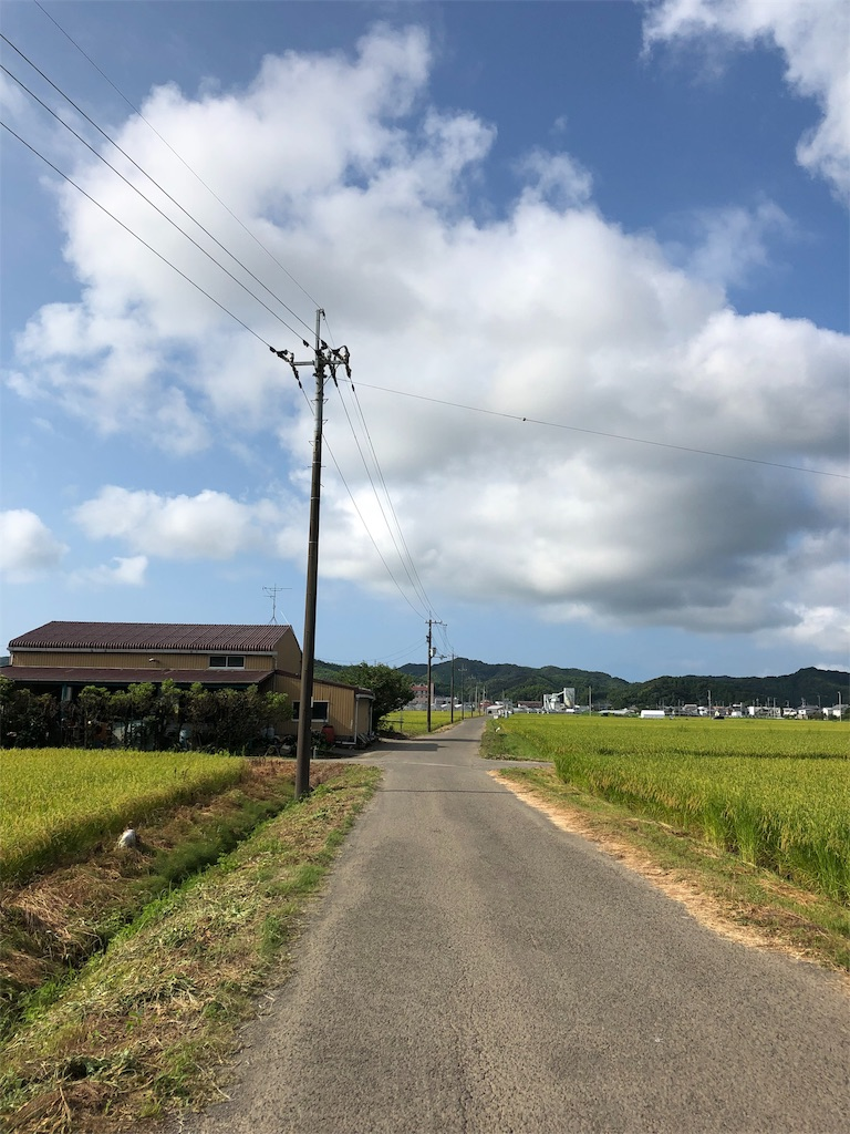 f:id:sikakebunko:20190801221117j:image