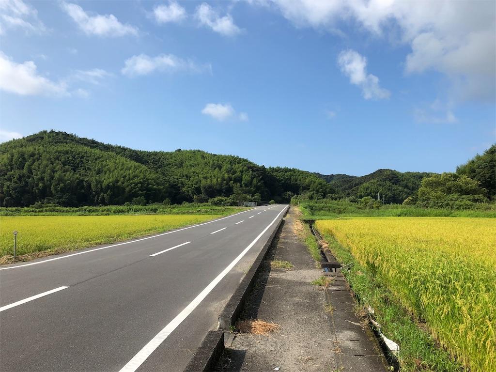 f:id:sikakebunko:20190801221150j:image