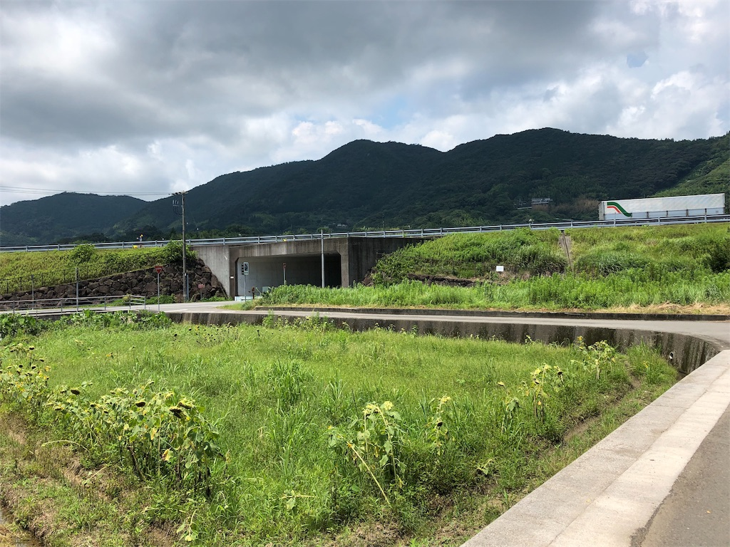 f:id:sikakebunko:20190801224413j:image