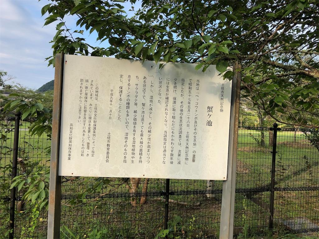 f:id:sikakebunko:20190801235311j:image