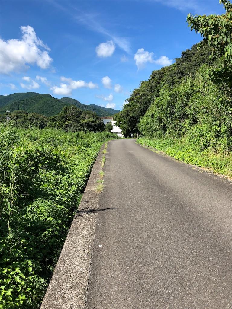 f:id:sikakebunko:20190806120222j:image