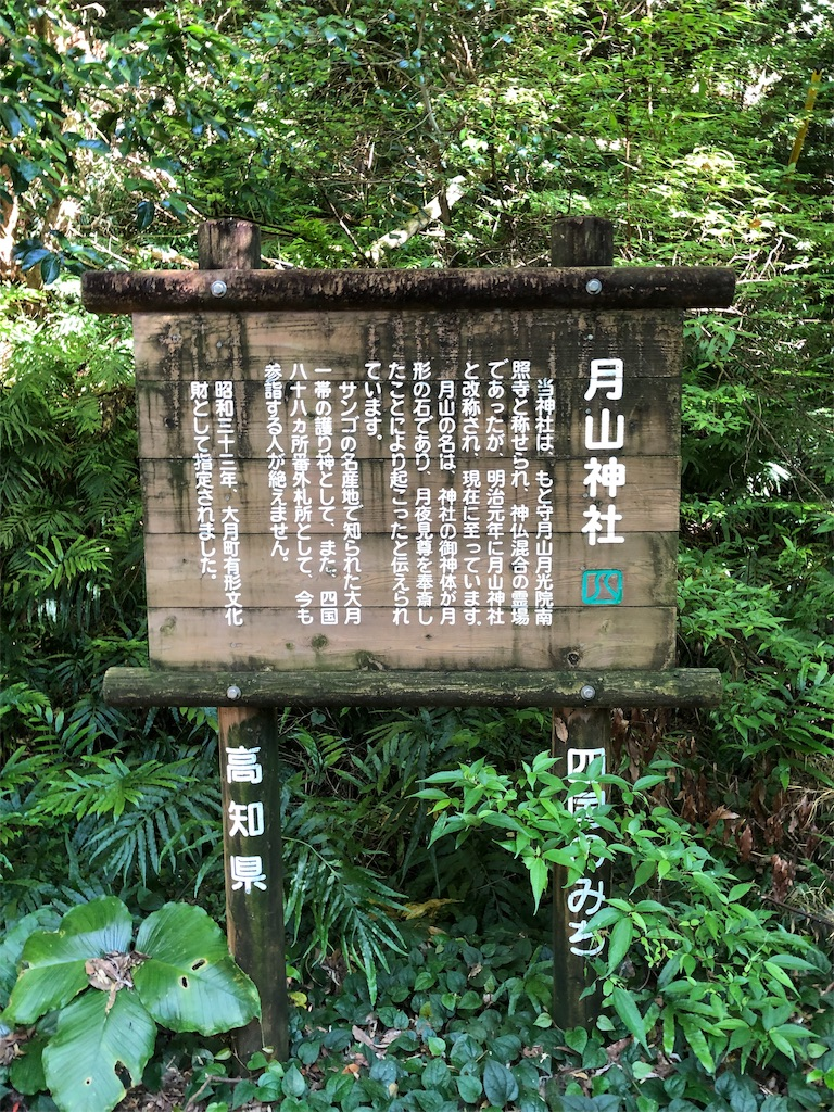 f:id:sikakebunko:20190806161918j:image