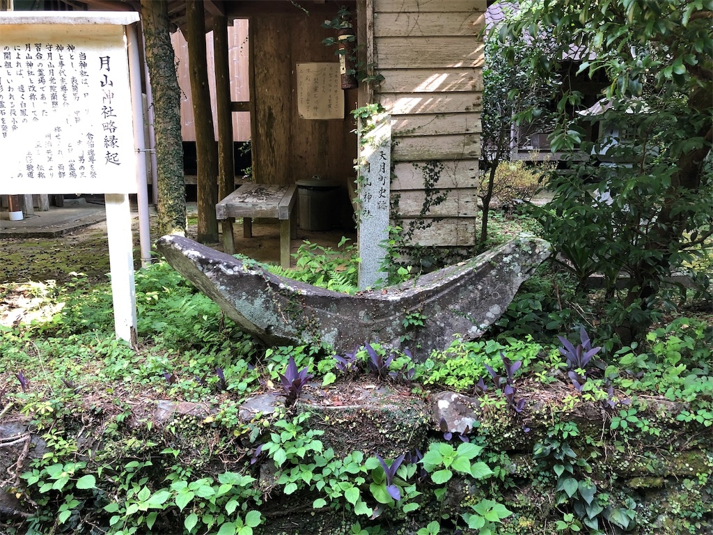 f:id:sikakebunko:20190806164555j:image