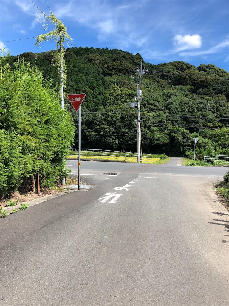 f:id:sikakebunko:20190806165154j:image